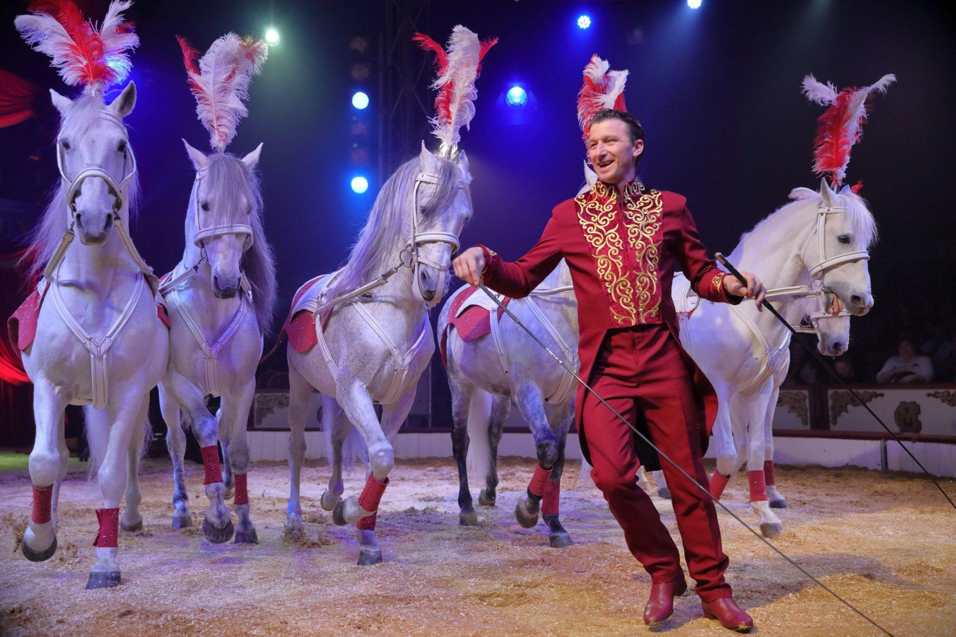 A Bayeux, le cirque classique et international à la portée de tous