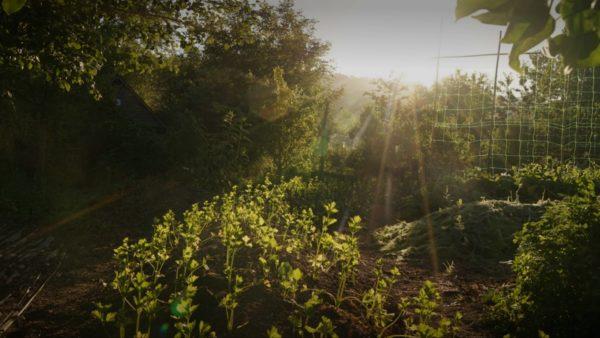 Au cœur de l'Eure : une ferme bio-inspirante