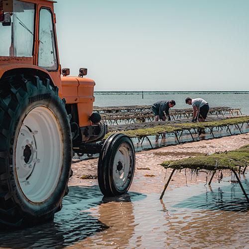 Agriculture raisonnée, produits de grande qualité