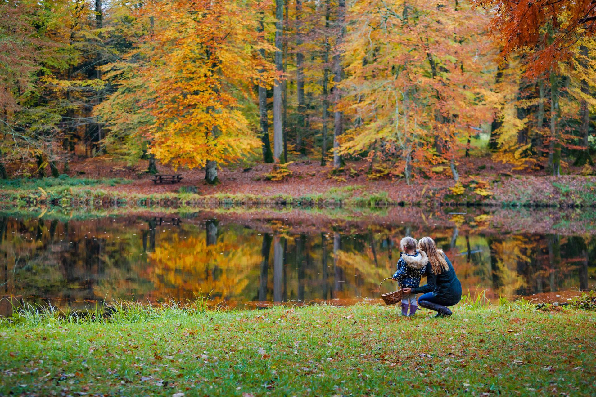Forêt de Bellême en automne ©Sabina Lorkin