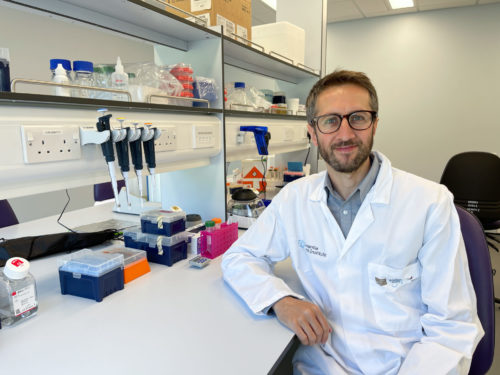 Santé : les recherches d'un Normand récompensées